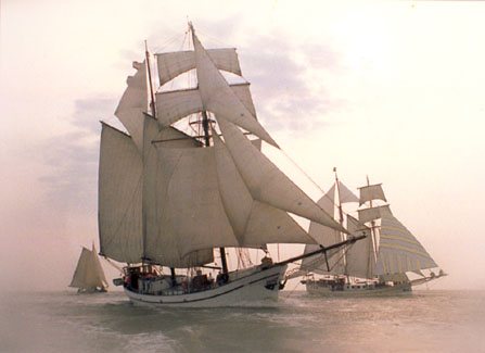 Segeln auf IJsselmeer oder Wattenmeer mit der Topsegelschoner Bisschop van Arkel ab Kiel