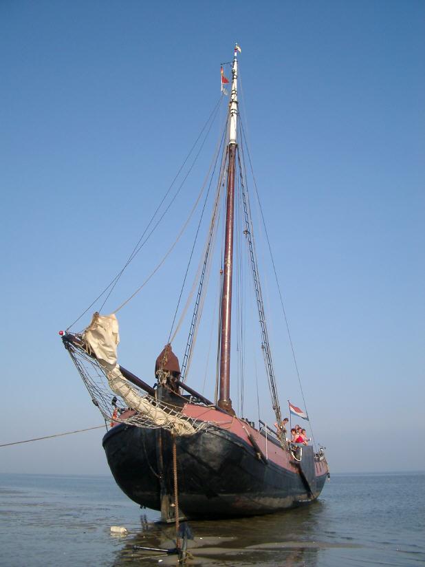 Segeln auf IJsselmeer oder Wattenmeer mit der Friesische Decktjalk Bruinvisch ab Harlingen