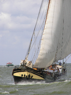 Segeln auf IJsselmeer oder Wattenmeer mit der Zweimastklipper Suydersee ab Harlingen
