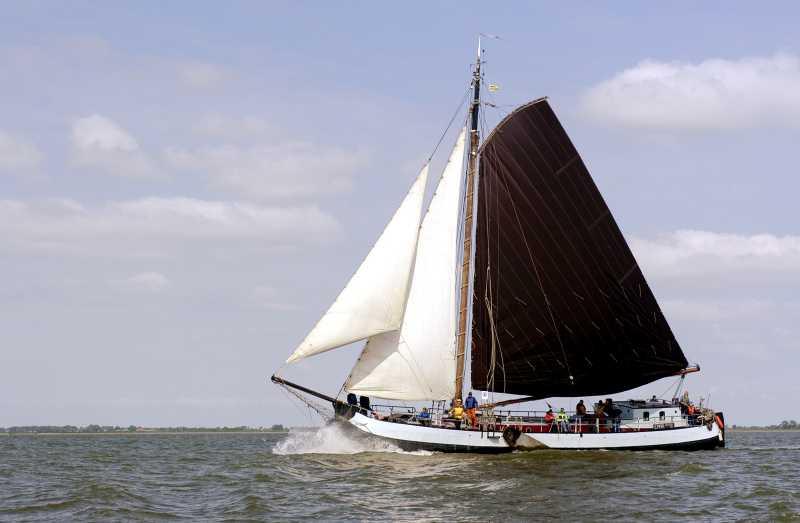 Segeln auf IJsselmeer oder Wattenmeer mit der Tjalk Emma ab Lemmer