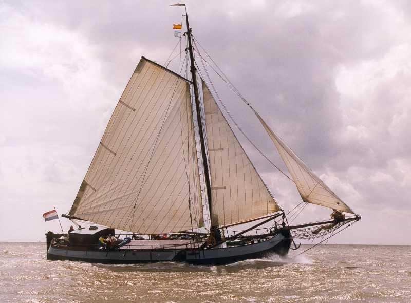 Segeln auf IJsselmeer oder Wattenmeer mit der Suedholl. Tjalk Albatros ab Makkum