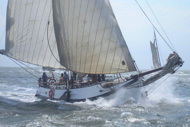 zeilen op IJsselmeer of Waddenzee met de noordzeebotter Bornrif vanuit Harlingen
