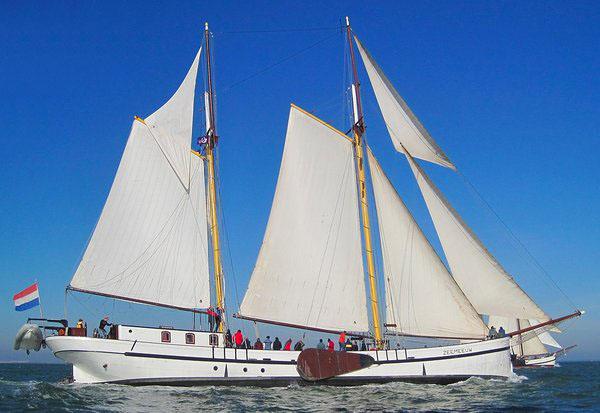 Segeln auf IJsselmeer oder Wattenmeer mit der Zweimastlogger Zeemeeuw ab Harlingen