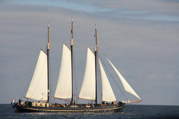 zeilen op IJsselmeer of Waddenzee met de klipper Novel vanuit Enkhuizen