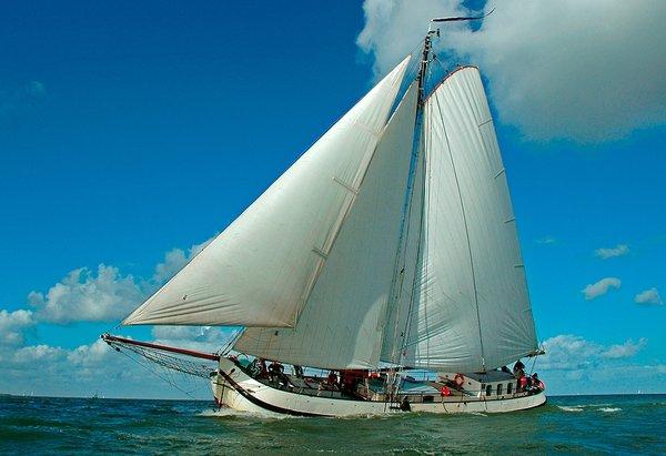 Segeln auf IJsselmeer oder Wattenmeer mit der Tjalk Eendracht ab Enkhuizen