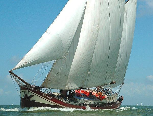 zeilen op IJsselmeer of Waddenzee met de tweemastklipper Waterwolf vanuit Enkhuizen
