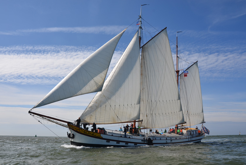 zeilen op IJsselmeer of Waddenzee met de klipper Ortolan vanuit Stavoren