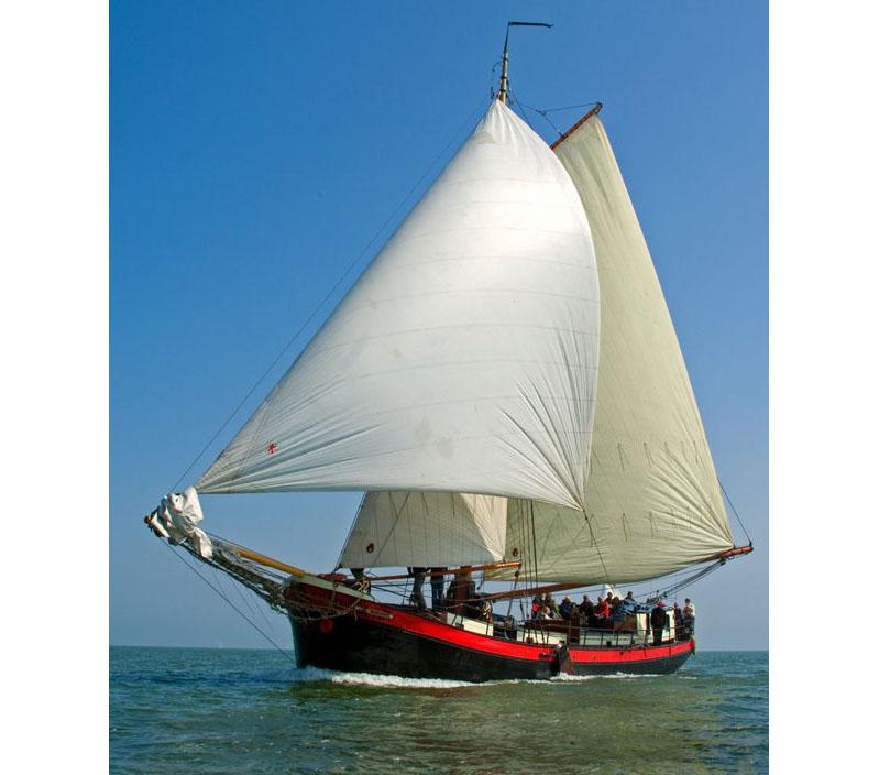 Segeln auf IJsselmeer oder Wattenmeer mit der Klipper Verwondering ab Enkhuizen