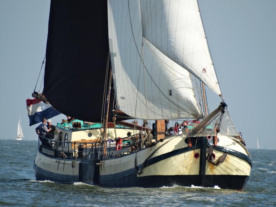 zeilen op IJsselmeer of Waddenzee met de Friese eenmasttjalk Vriendschap vanuit Enkhuizen