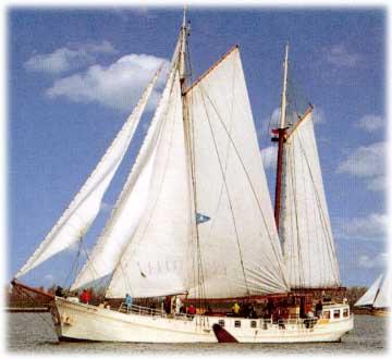 Segeln auf IJsselmeer oder Wattenmeer mit der Klipper Antoinette ab Makkum