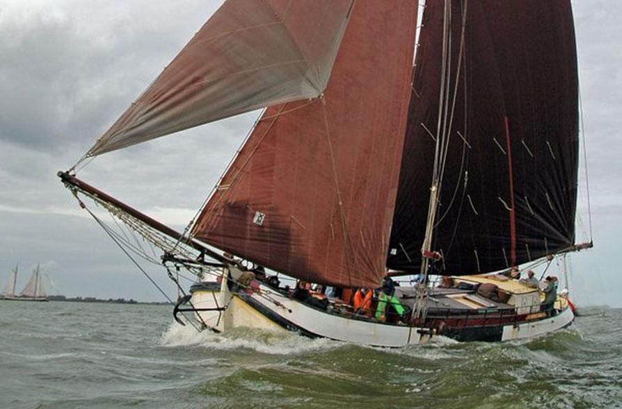Segeln auf IJsselmeer oder Wattenmeer mit der Einmasttjalk Antonia Maria ab Harlingen