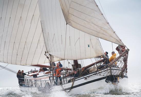Segeln auf IJsselmeer oder Wattenmeer mit der Steilsteven Bonte Piet ab Harlingen