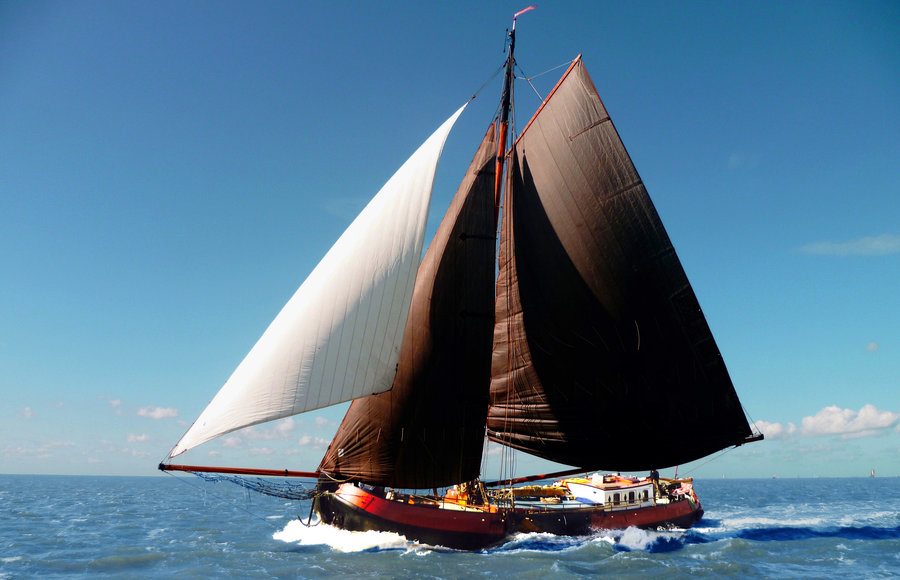 Segeln auf IJsselmeer oder Wattenmeer mit der Tjalk Boreas ab Harlingen