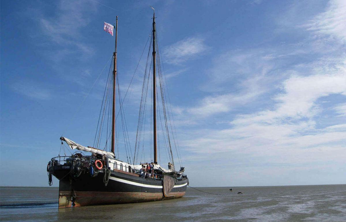 zeilen op IJsselmeer of Waddenzee met de stevenklipper Broedertrouw vanuit Enkhuizen