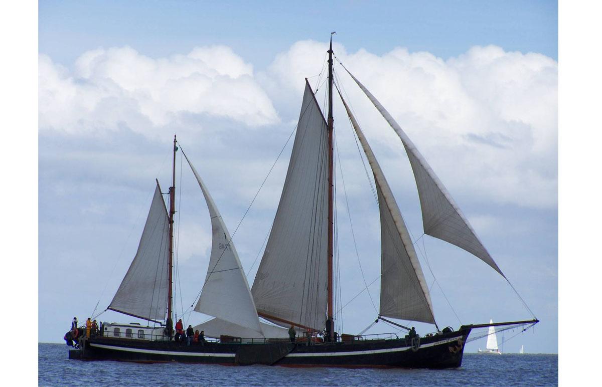 Segeln auf IJsselmeer oder Wattenmeer mit der Stevenklipper Broedertrouw ab Enkhuizen