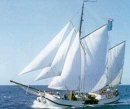 Segeln auf IJsselmeer oder Wattenmeer mit der Zweimastkofftjalk Jan Huygen ab Kiel