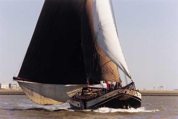 Segeln auf IJsselmeer oder Wattenmeer mit der Hasselteraak Excelsior ab Harlingen