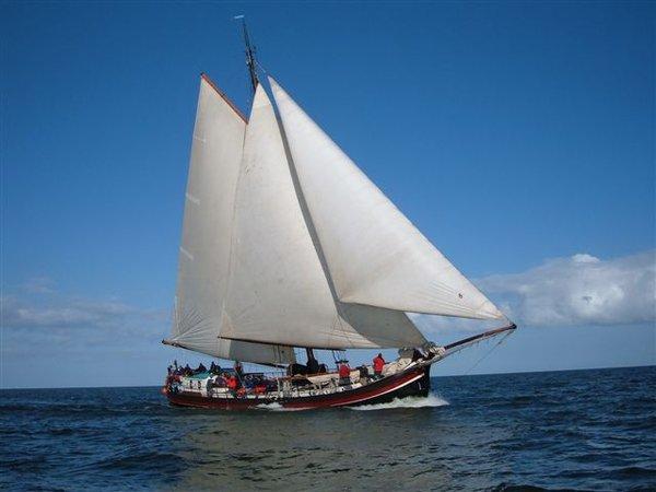 Segeln auf IJsselmeer oder Wattenmeer mit der Stevenaak La Boheme ab Enkhuizen