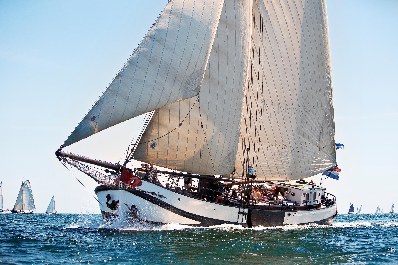 Segeln auf IJsselmeer oder Wattenmeer mit der Tjalk Larus ab Harlingen