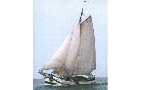 Segeln auf IJsselmeer oder Wattenmeer mit der Tjalk Lis ab Muiden