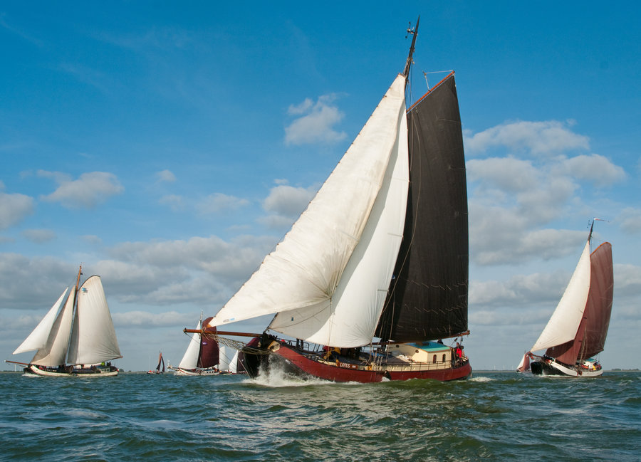 zeilen op IJsselmeer of Waddenzee met de eenmasttjalk Lotus vanuit Harlingen