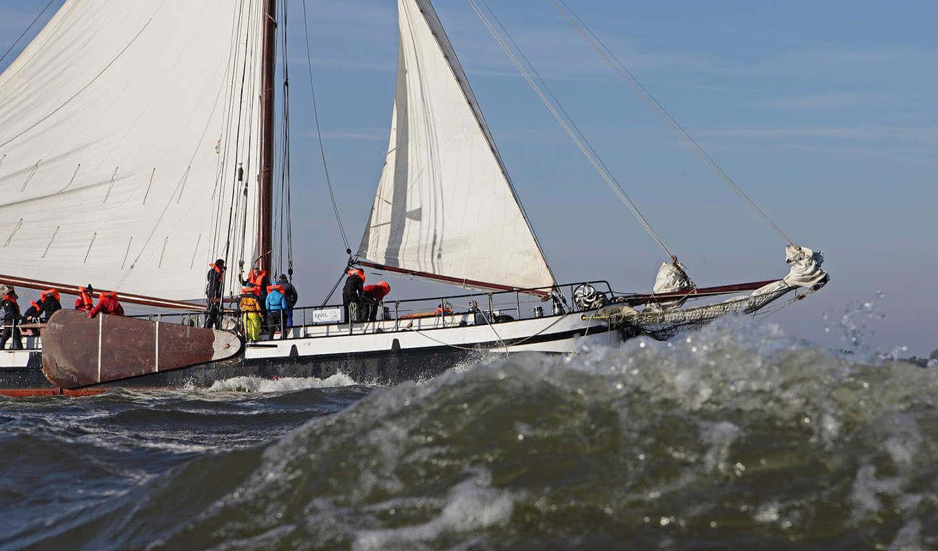 zeilen op IJsselmeer of Waddenzee met de steilsteven Rival vanuit Enkhuizen