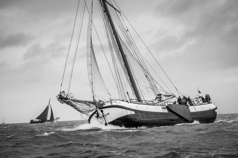 zeilen op IJsselmeer of Waddenzee met de zeetjalk Spes Mea vanuit Harlingen
