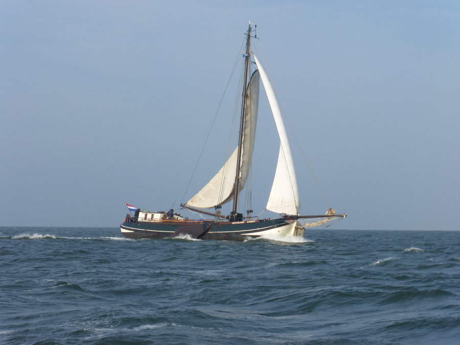 Segeln auf IJsselmeer oder Wattenmeer mit der Friesische Einmasttjalk Vertrouwen ab Enkhuizen