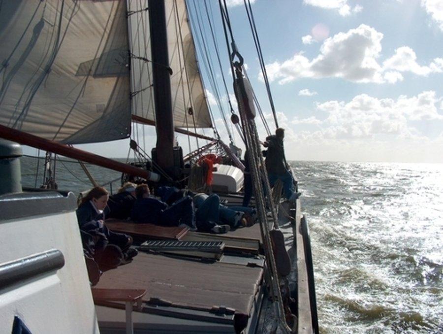 zeilen op IJsselmeer of Waddenzee met de klipper Zuid-Holland vanuit Harlingen