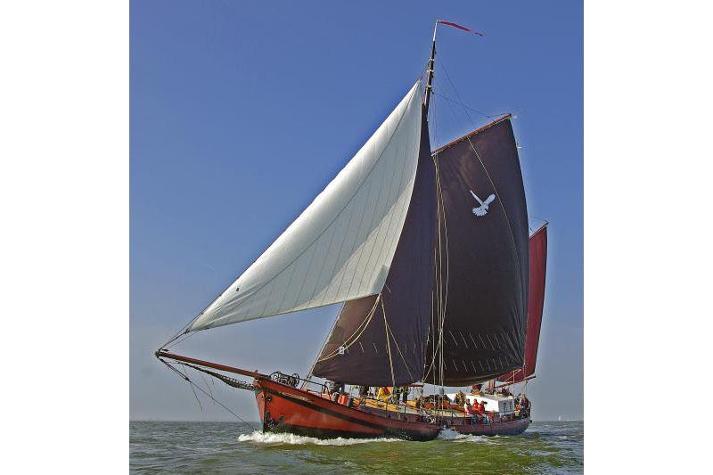 Segeln auf IJsselmeer oder Wattenmeer mit der Klipperaak Zwarte Valk ab Makkum